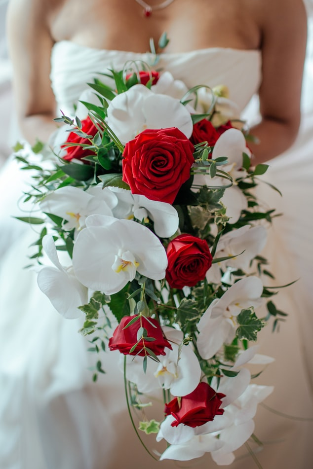 Bride holding cascade bouquet with red roses