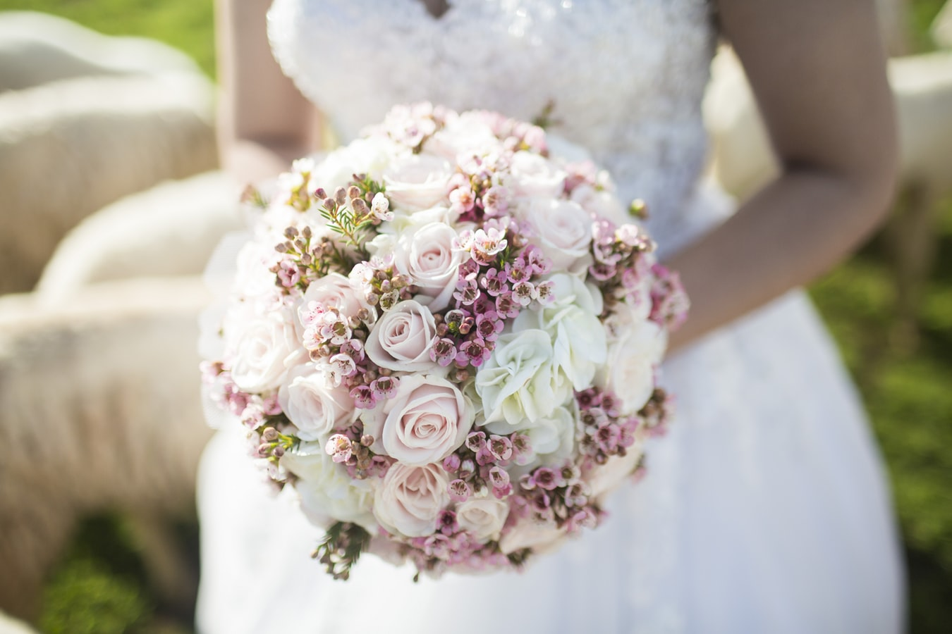 Bride holding round bouquet