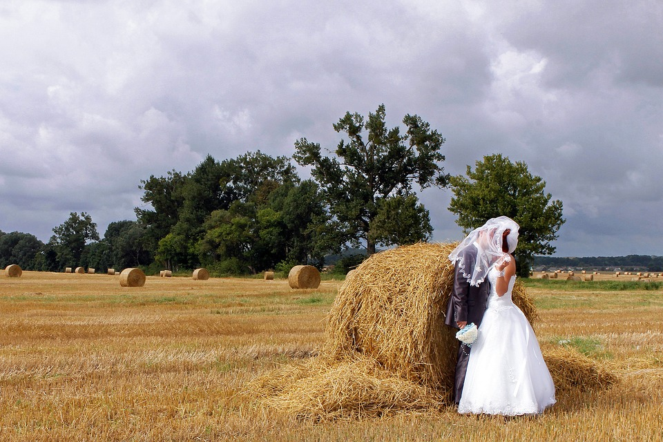 Bride and groom in the farm
