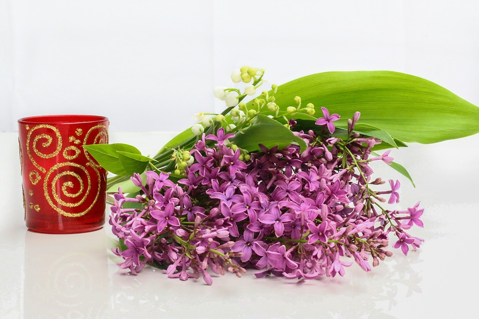 lilac with leaves next to vase