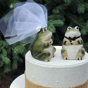 Silly frogs wedding cake topper