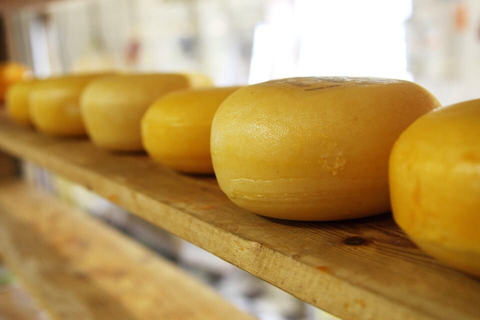 Round cheese closeup
